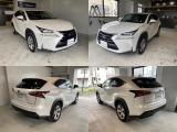 NX300h バージョンL 4WD ワンオ-ナ-4WDサンル-フ三眼LED