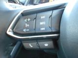 オーディオコントローラーやブルートゥーウでの携帯の会話もボタンスイッチで簡単にお行えます。