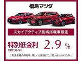 特別金利2.9%対象車両