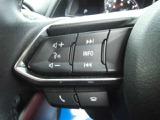 オーディオのボリューム調整やハンズフリー通話もステアリング左のスイッチで操作可能です。