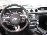 フォード マスタング 50イヤーズエディション