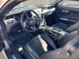 BCD在庫車両は、当店スタッフが選び抜いた1台。当社現地法人「Mitsuoka Motors America Inc.」にて車両の履歴を確認し、車両をセレクト!